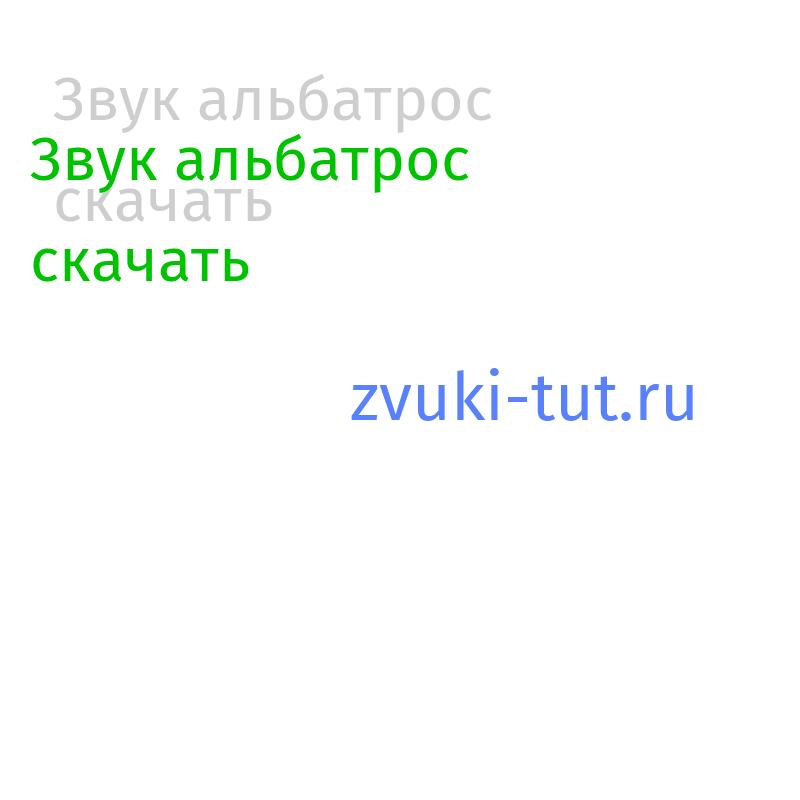 альбатрос Звук