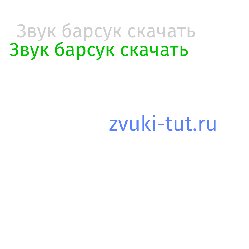 барсук Звук