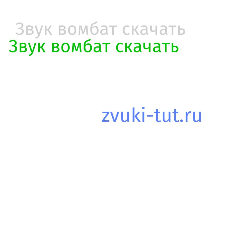 вомбат Звук