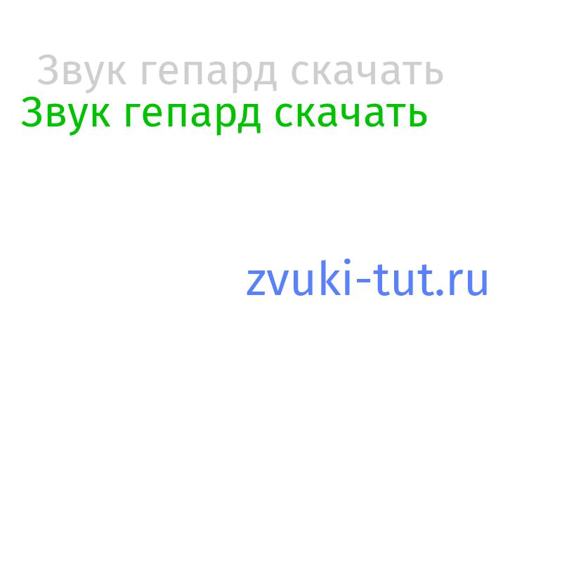 гепард Звук