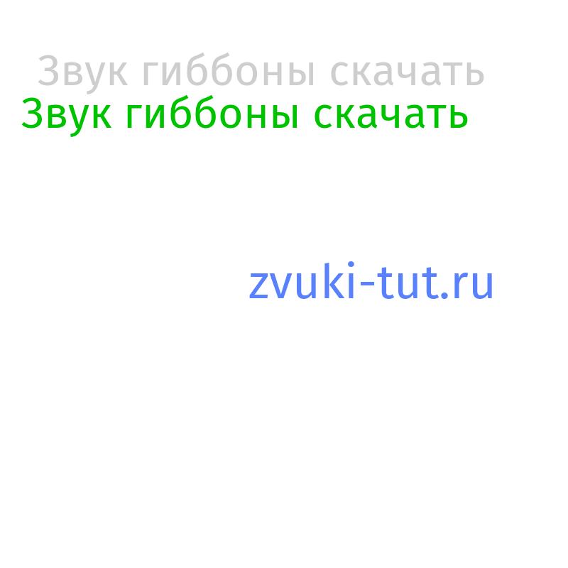 гиббоны Звук