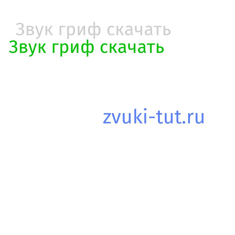 гриф Звук