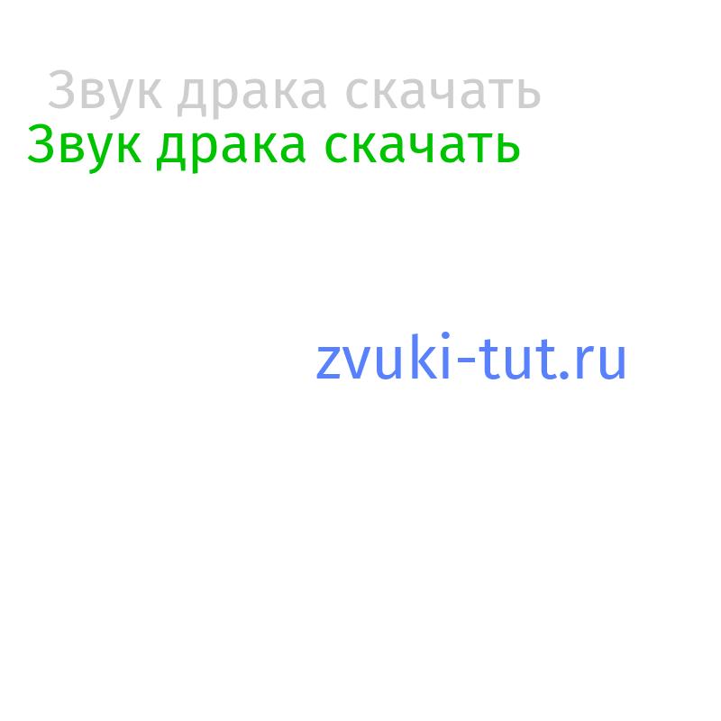 драка Звук