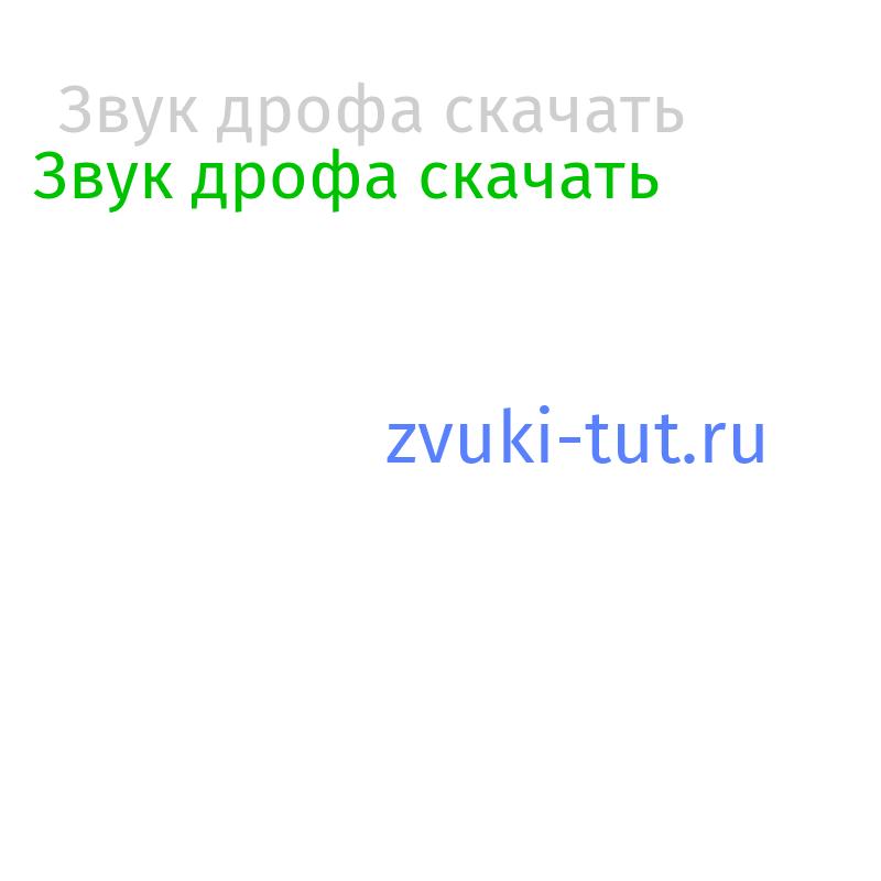 дрофа Звук