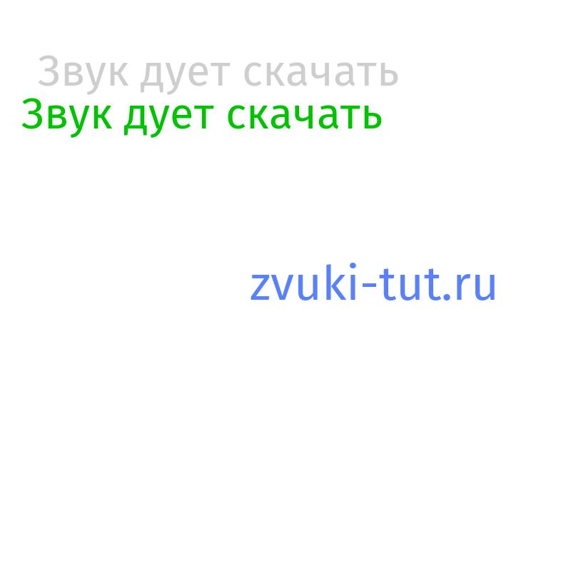 дует Звук