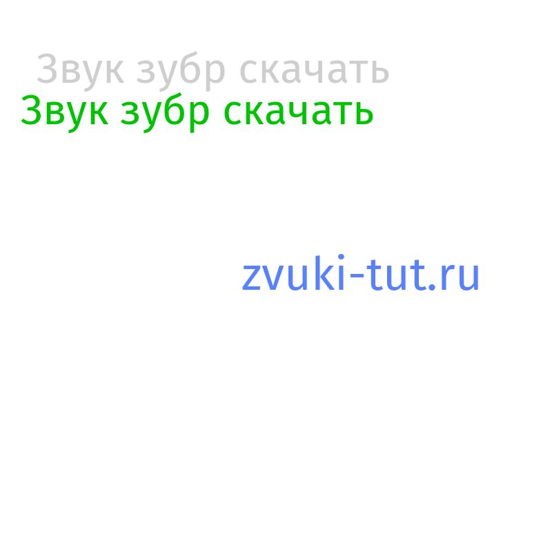 зубр Звук