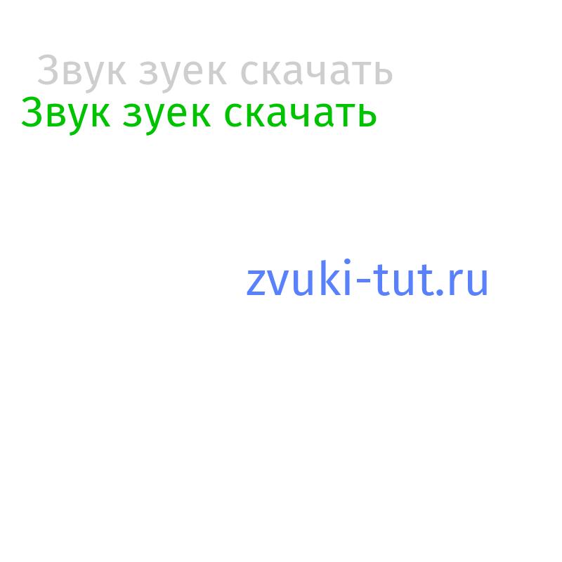 зуек Звук