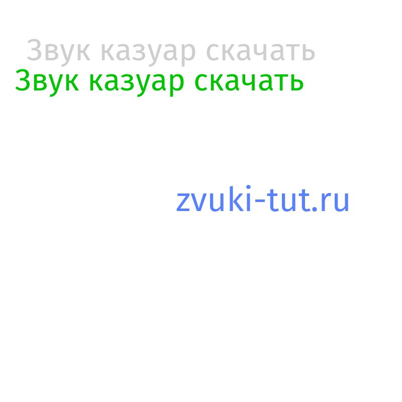 казуар Звук