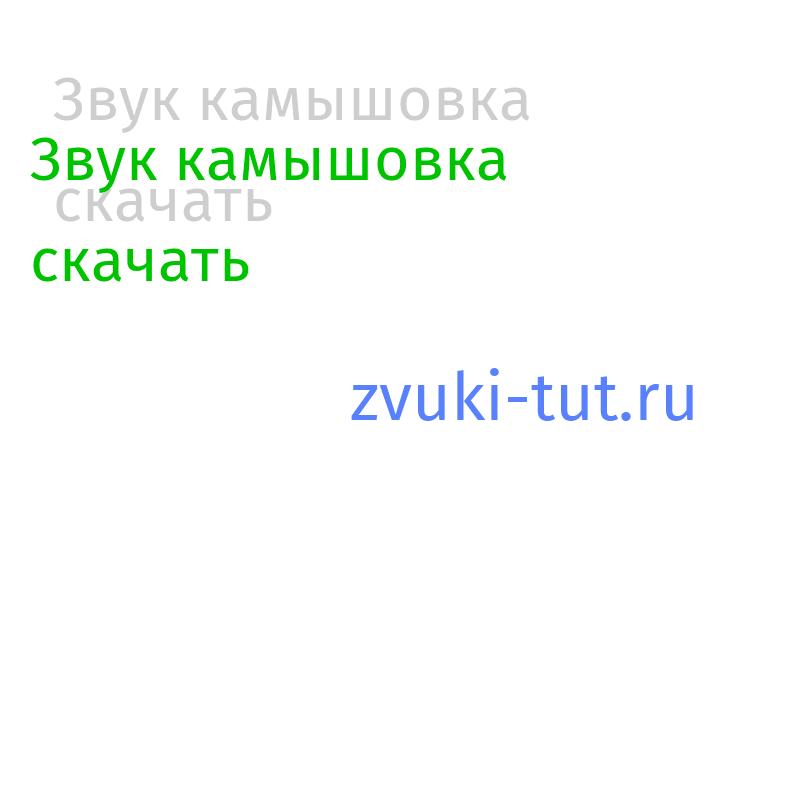 камышовка Звук