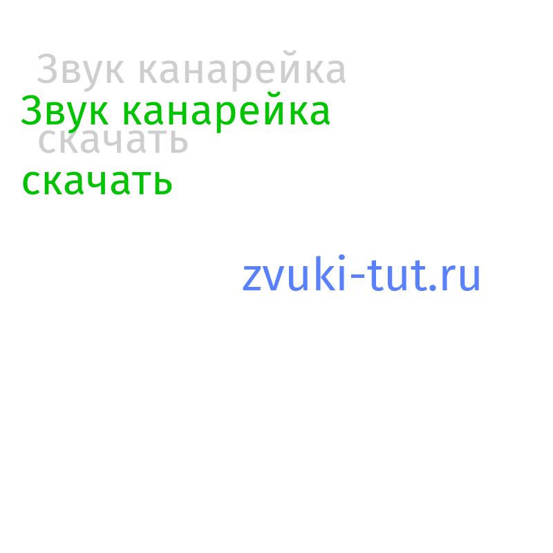 канарейка Звук