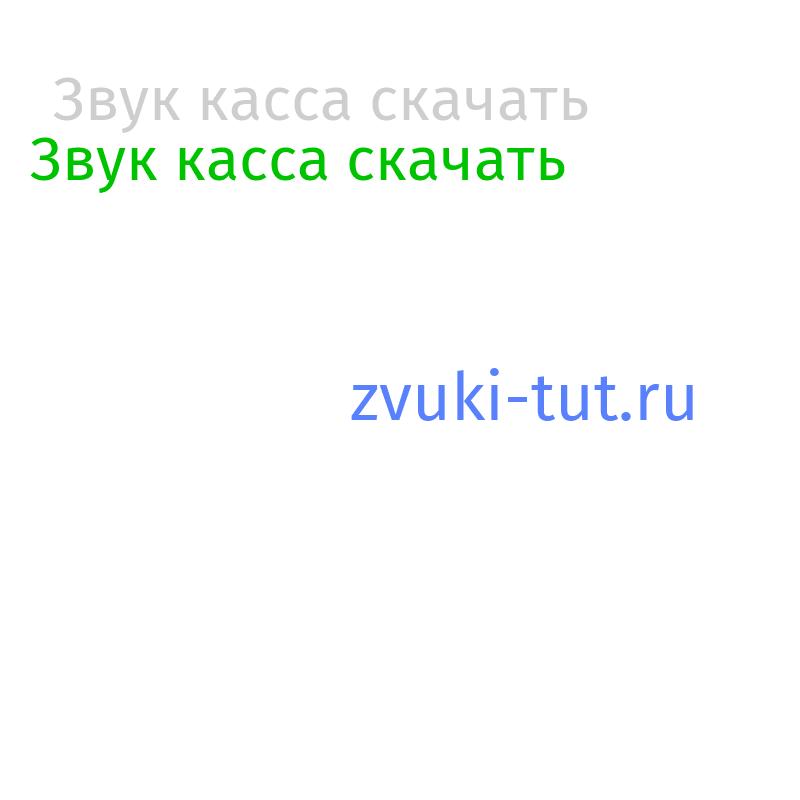касса Звук