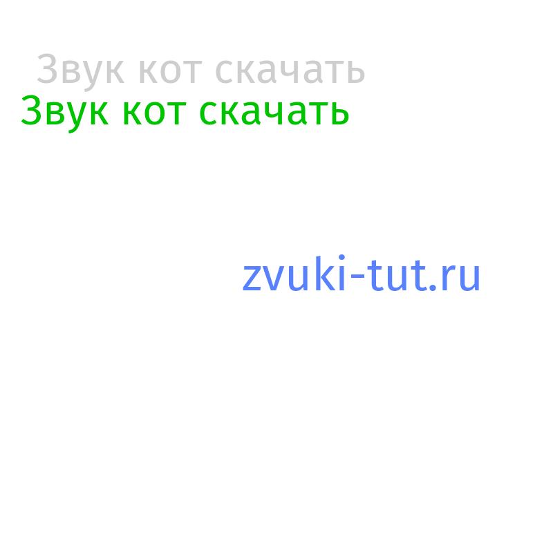 кот Звук
