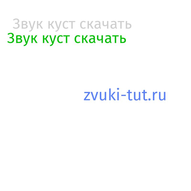 куст Звук