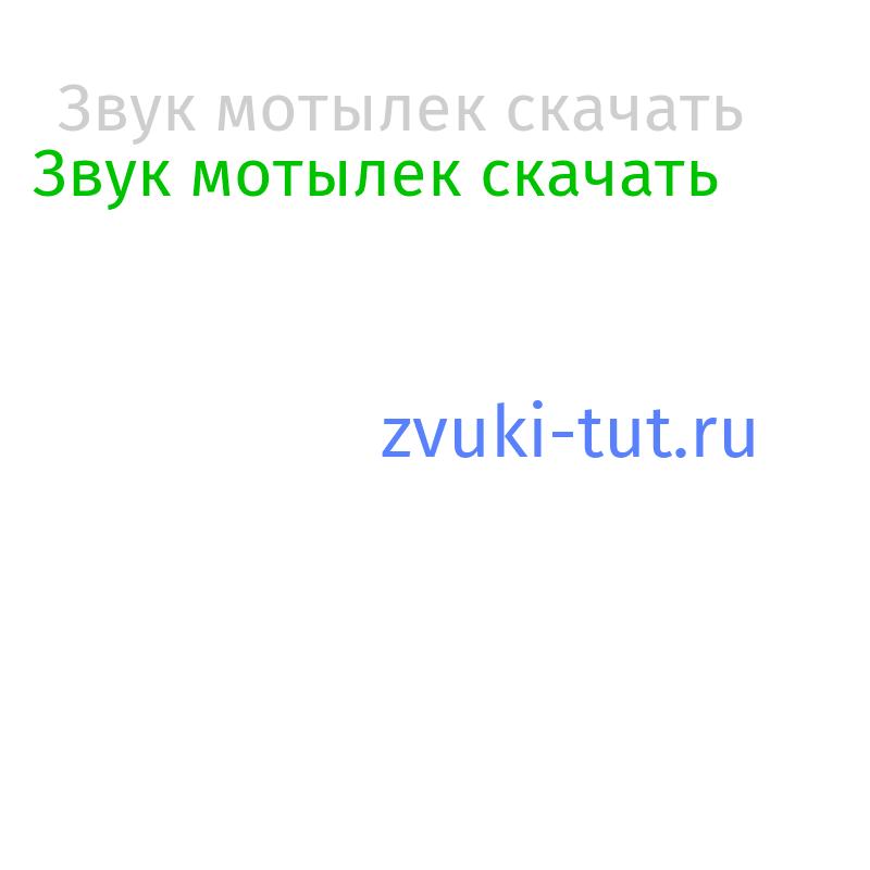 мотылек Звук