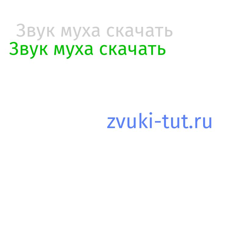 муха Звук