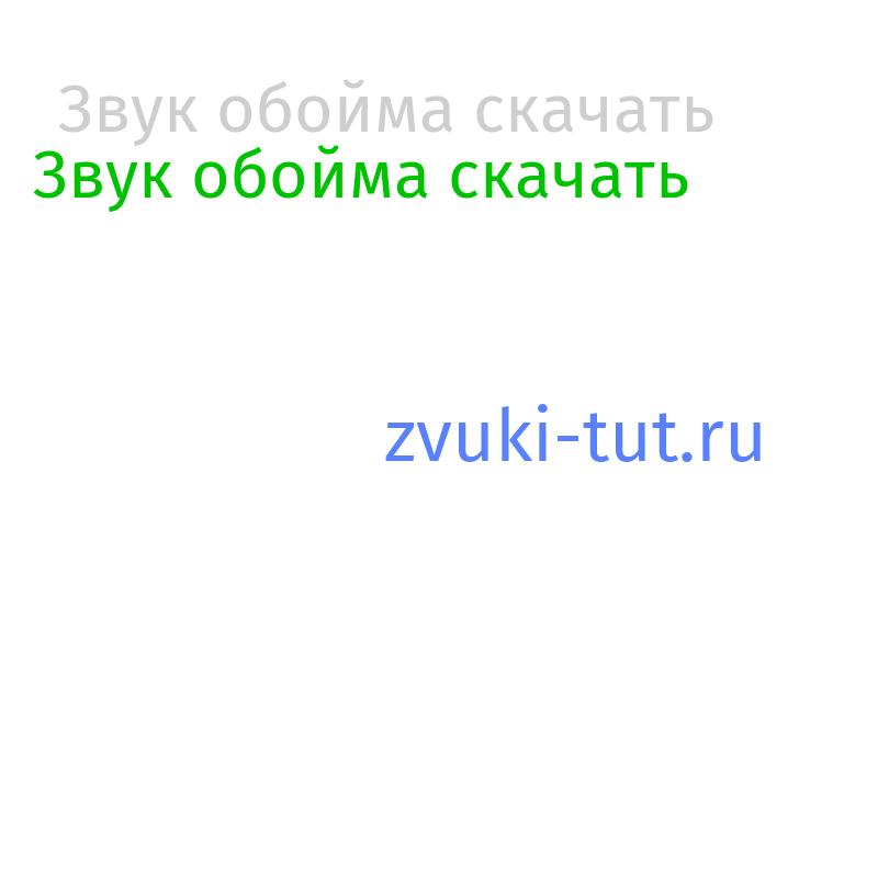 обойма Звук