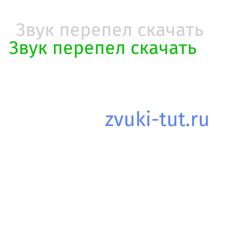 перепел Звук