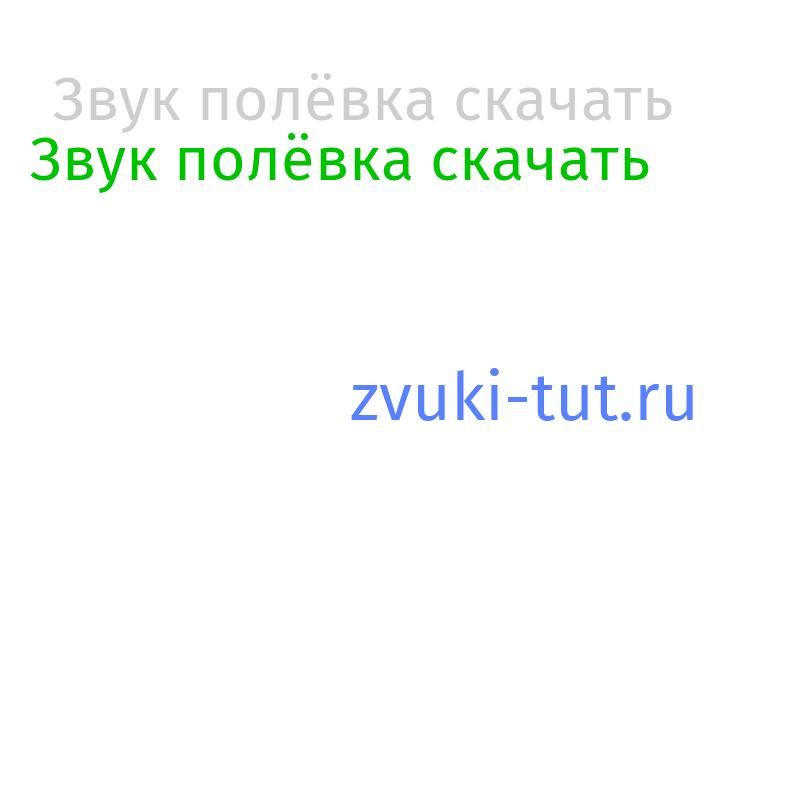полёвка Звук