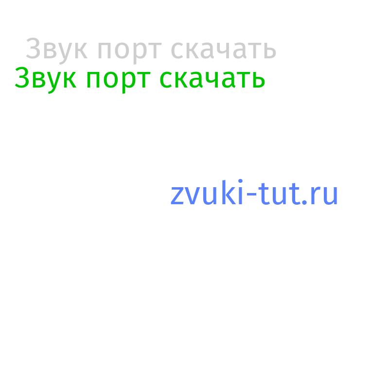 порт Звук