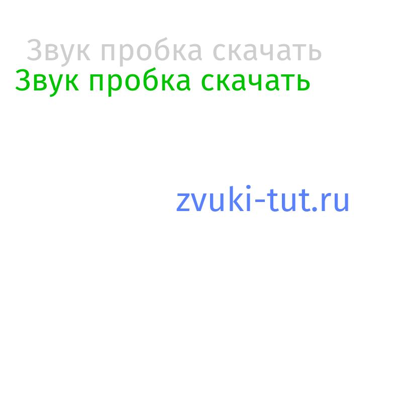 пробка Звук