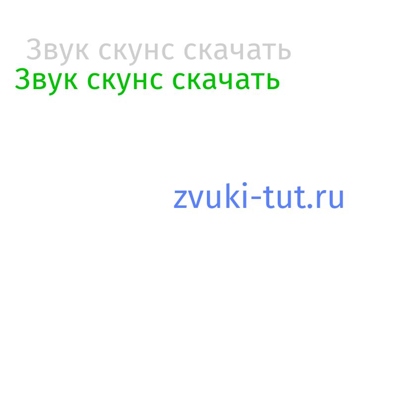 скунс Звук