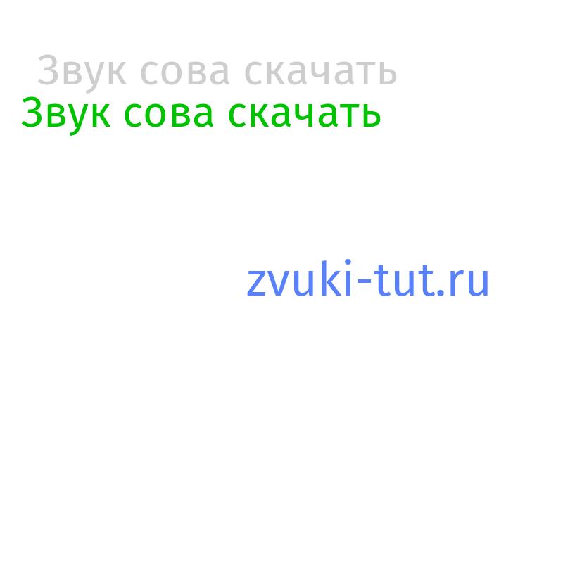 сова Звук