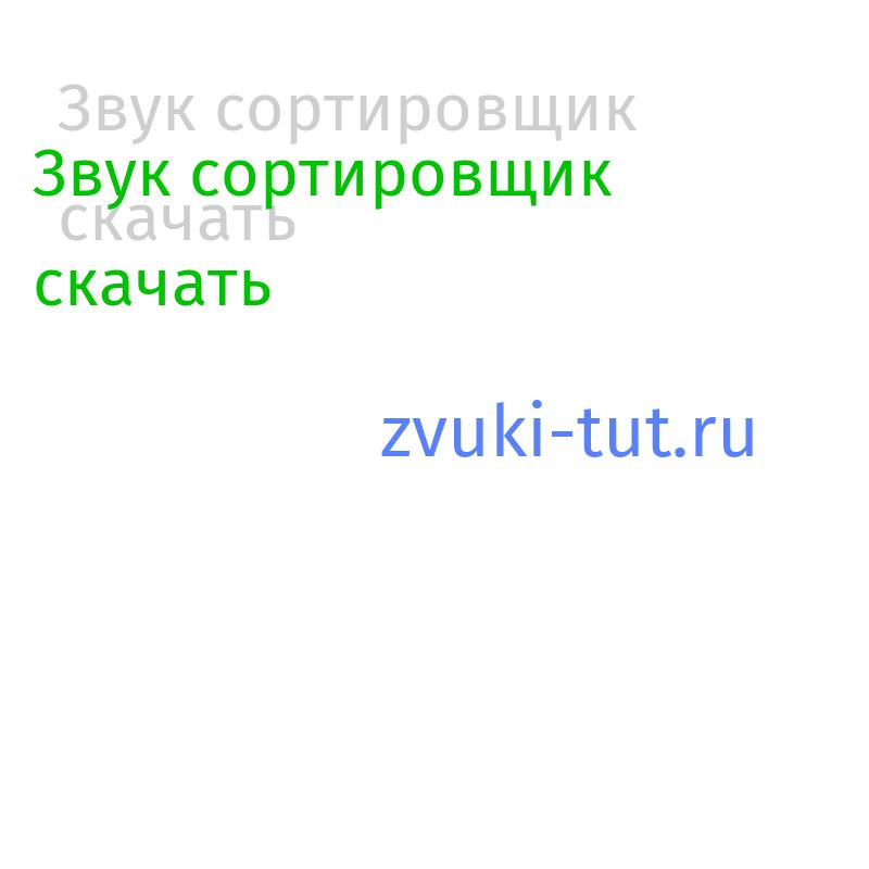 сортировщик Звук
