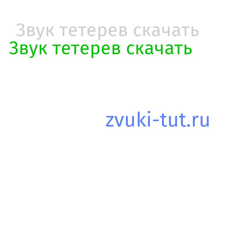 тетерев Звук