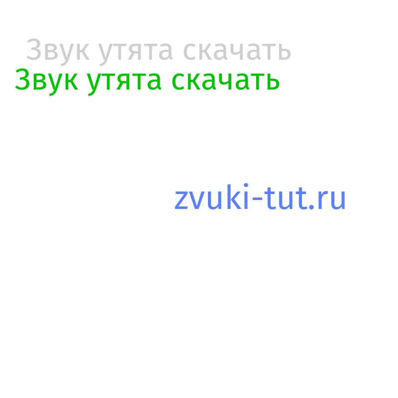 утята Звук