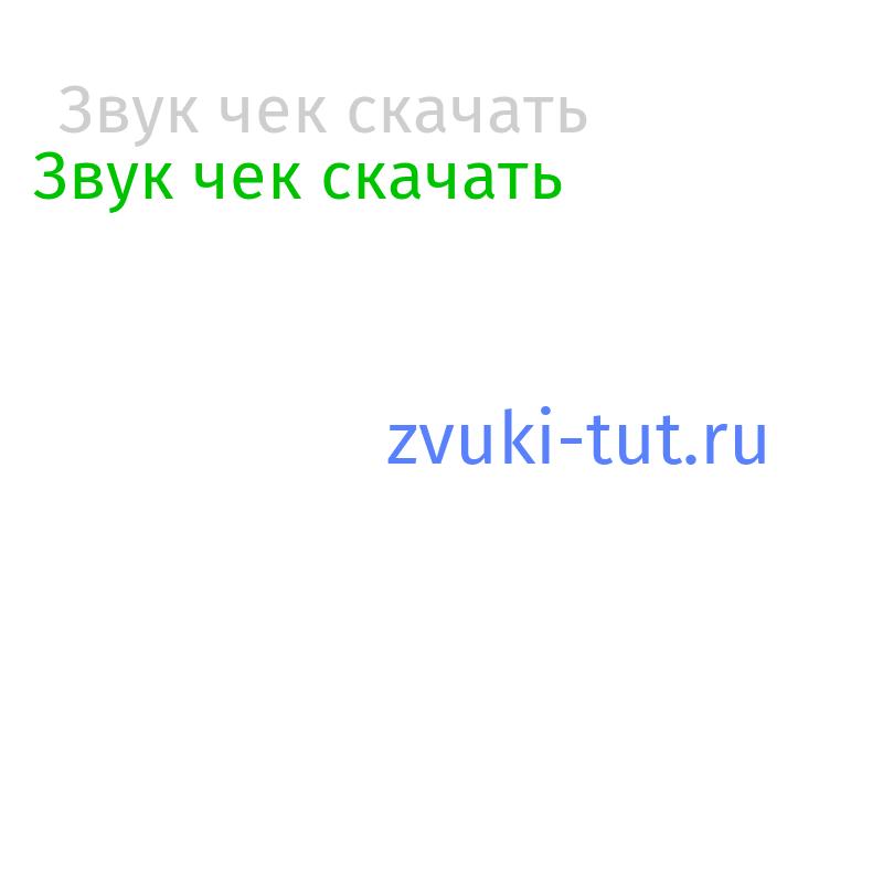 чек Звук
