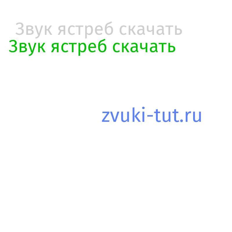 ястреб Звук